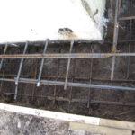 concrete steel 2